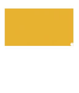 ROI-transparent